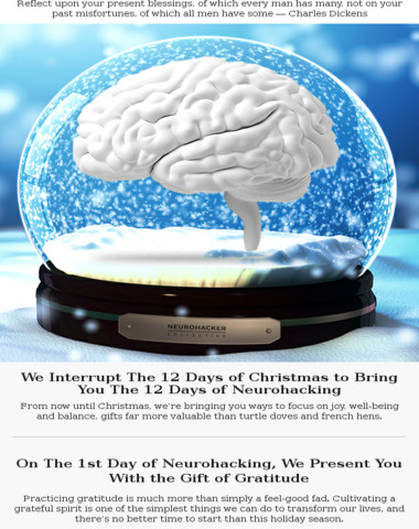 The 12 days of neurohacking have begun!