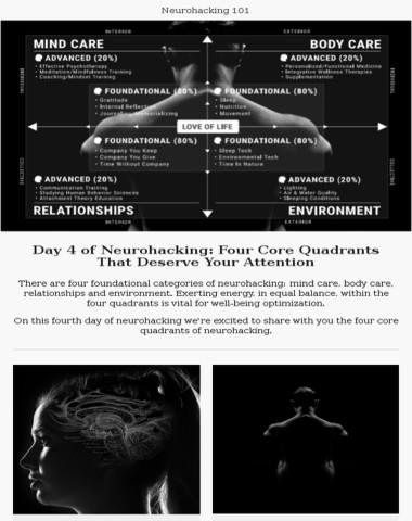 Day 4 of neurohacking: essential quadrants