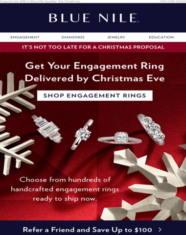Blue Nile Engagement ?: There's Still Time For A Holiday Proposal!