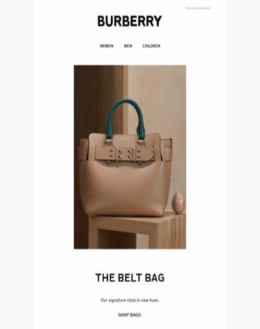 9858bccb084d Burberry - The Belt Bag