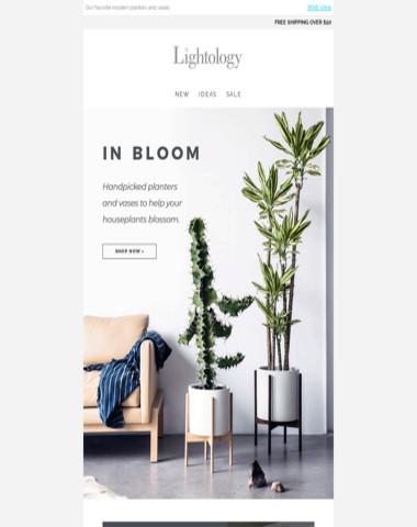 Handpicked: Planters & Vases