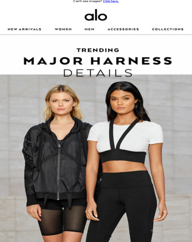 So Major Right Now: Harness Highlights ?