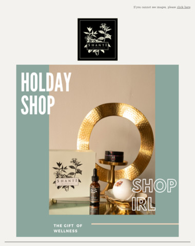 Give the gift of wellness this holiday season