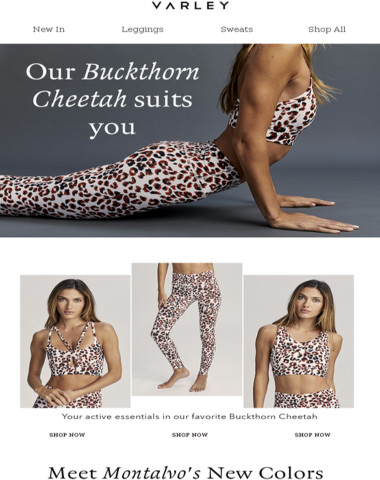 Our Buckthorn Cheetah suits you
