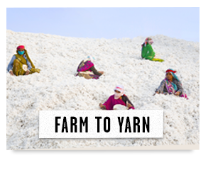 Farm to Yarn