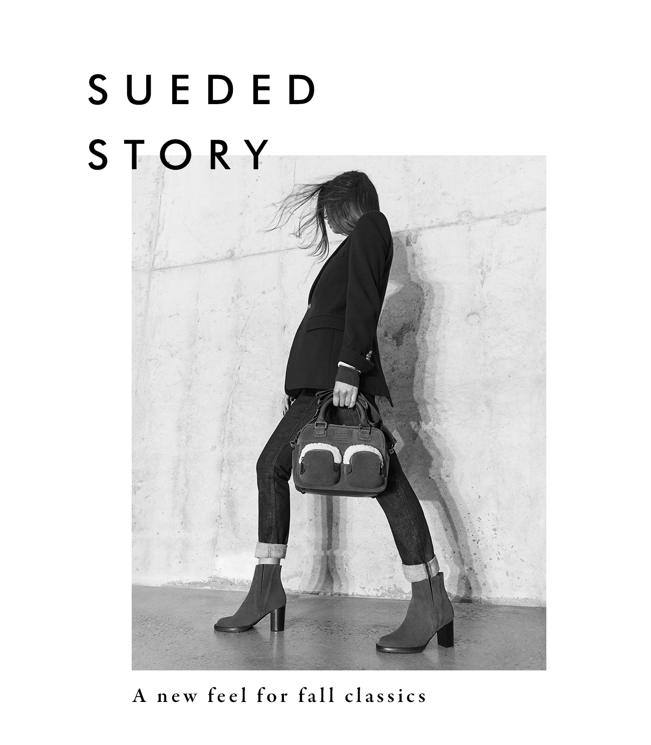 Sueded Story