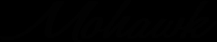 Mohawk General Store Logo