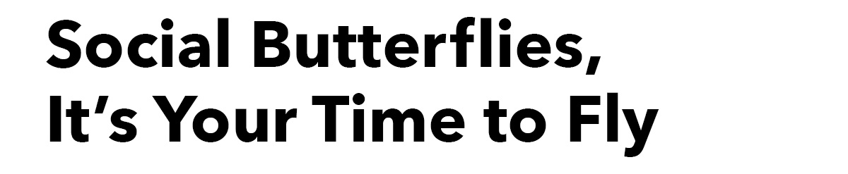 Social Butterflies, It's Your Time to Fly