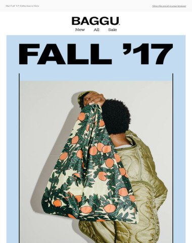 Our Fall '17 Collection is Here