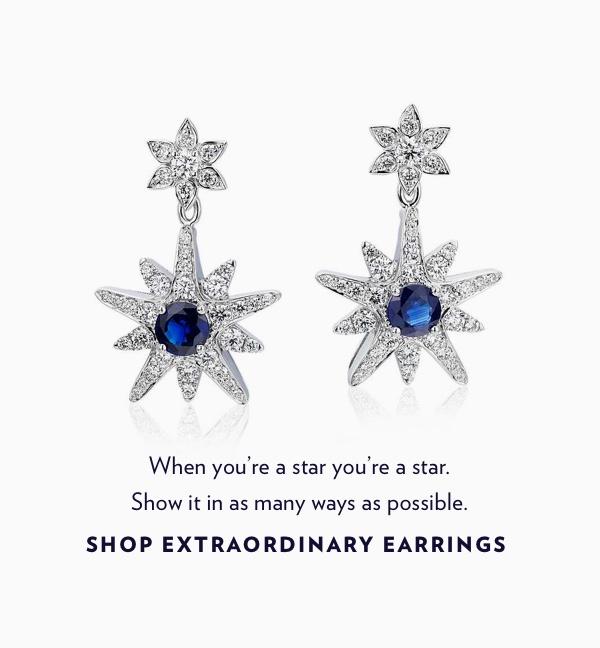 Shop Extraordinary Earrings.