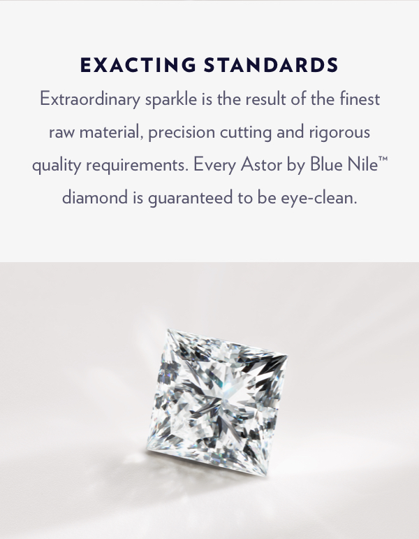 Exacting Standards | Shop Now