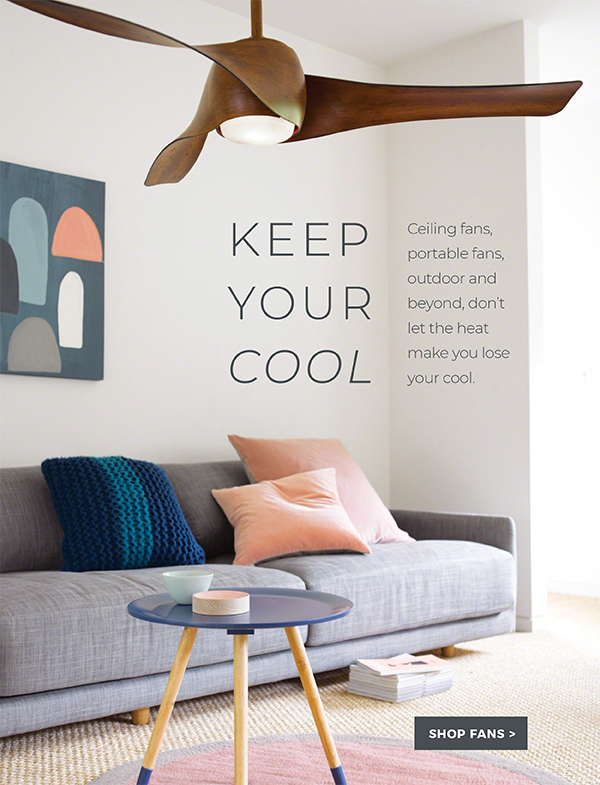 Ceiling Fans & Ideas | Explore